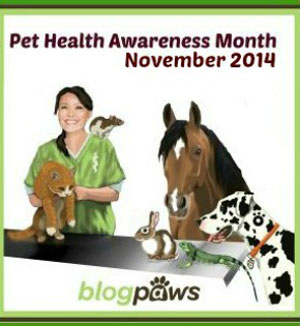 pet-health-awareness