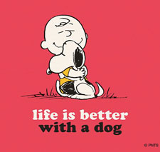 better with dog